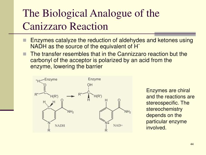 The Biological Analogue of the Canizzaro Reaction