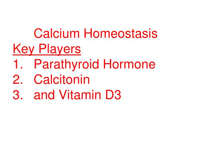 Calcium homeostasis key players 1 parathyroid hormone 2 calcitonin 3 and vitamin d3