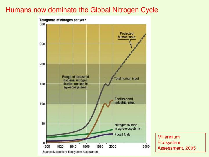 Humans now dominate the Global Nitrogen Cycle