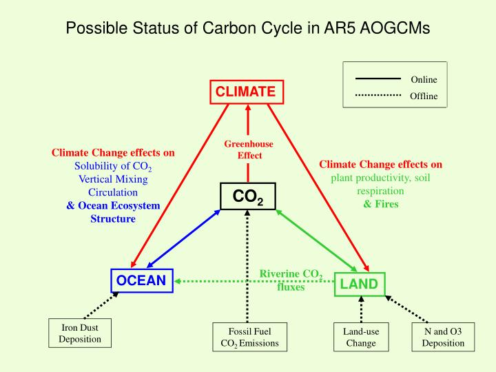 Possible Status of Carbon Cycle in AR5 AOGCMs