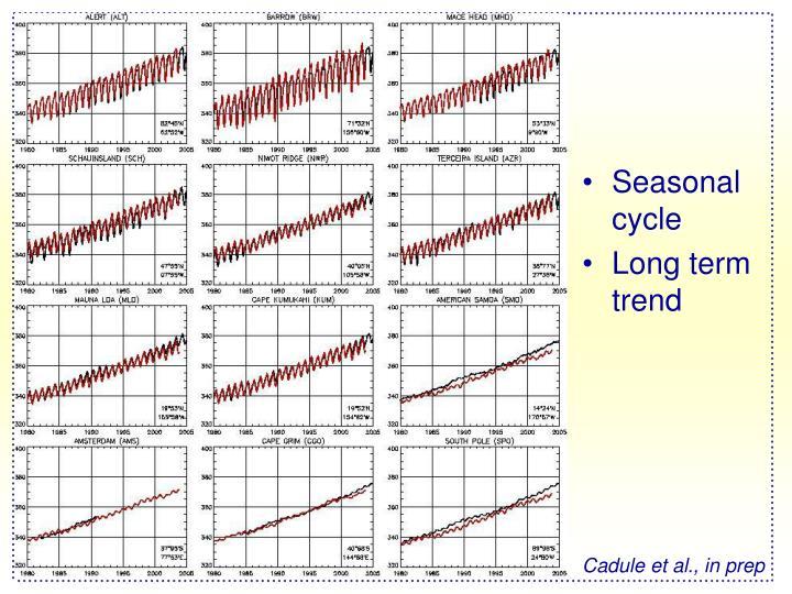 Seasonal cycle