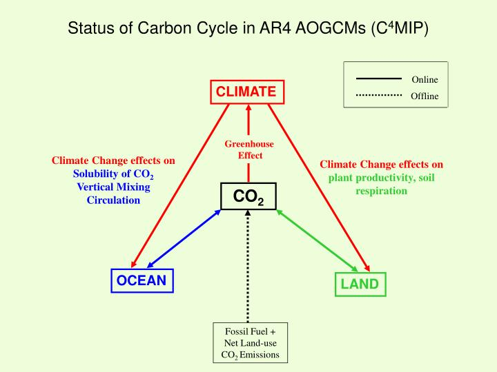 Status of Carbon Cycle in AR4 AOGCMs (C