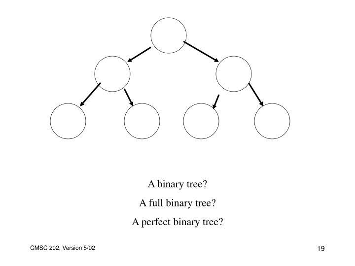 A binary tree?