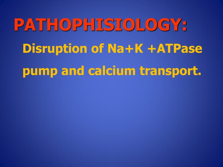 Pathophisiology