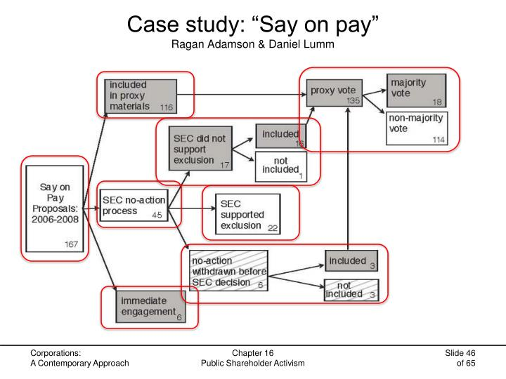 """Case study: """"Say on pay"""""""