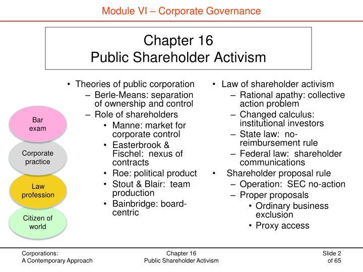 Chapter 16 public shareholder activism