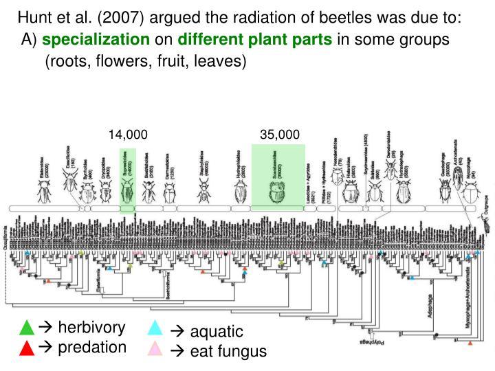 Hunt et al. (2007