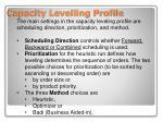 capacity levelling profile