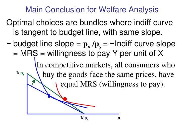 Main Conclusion for Welfare Analysis