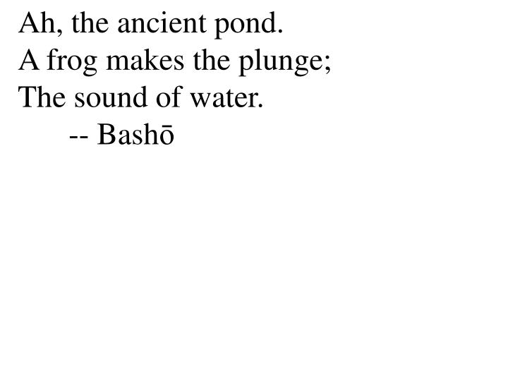 Ah, the ancient pond.