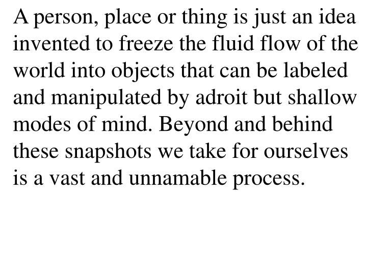 A person, place or thing is just an idea invented to freeze the fluid flow of the world into objects that can be labeled and manipulated by adroit but shallow modes of mind. Beyond and behind these snapshots we take for ourselves is a vast and unnamable process.