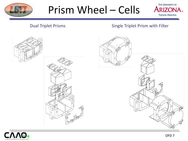 Prism Wheel – Cells