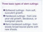 three basic types of stem cuttings