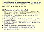 building community capacity1