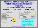 federal employees dental vision insurance program fedvip