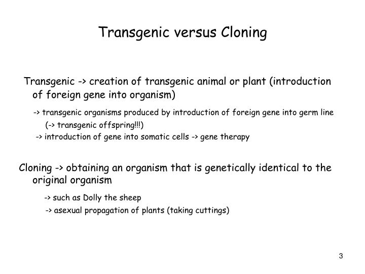 transgenic animals essay Transgenic animals a transgenic animal is one that carries a foreign gene that has been deliberately inserted into its genome the foreign gene is constructed using recombinant dna methodology.