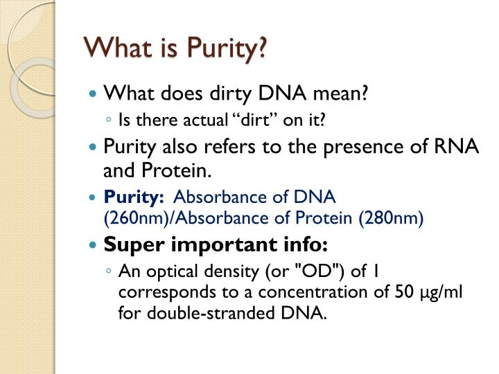 What is Purity?