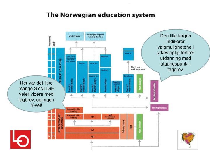 Den lilla fargen indikerer valgmulighetene i yrkesfaglig tertiær utdanning med utgangspunkt i fagbrev.