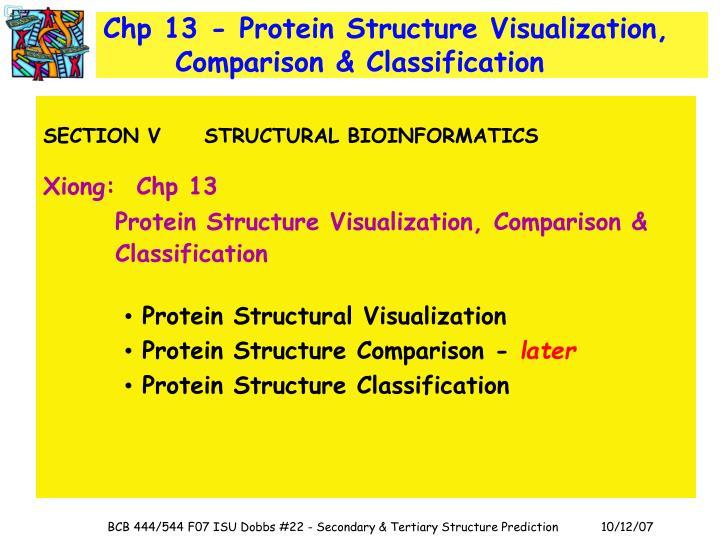 Chp 13 - Protein Structure Visualization, Comparison & Classification