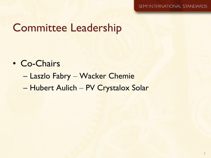 Committee leadership