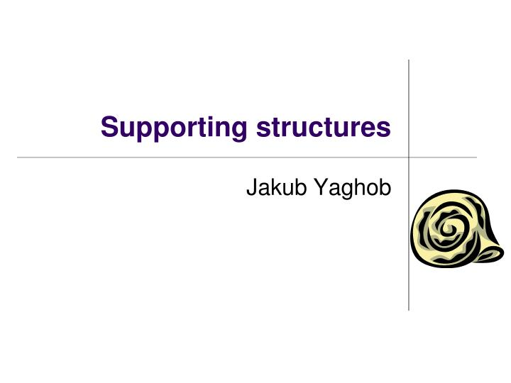 supporting structures n.