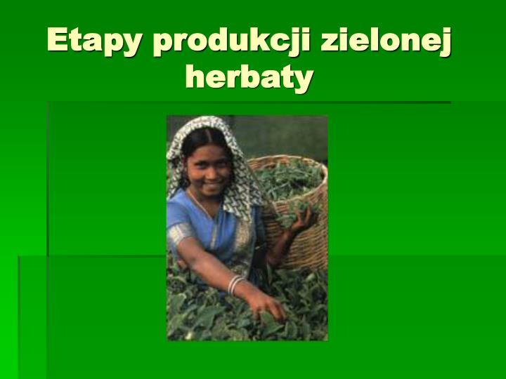 Etapy produkcji zielonej herbaty
