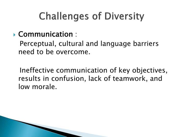 challenge workplace diversity