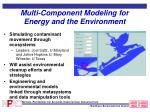 multi component modeling for energy and the environment