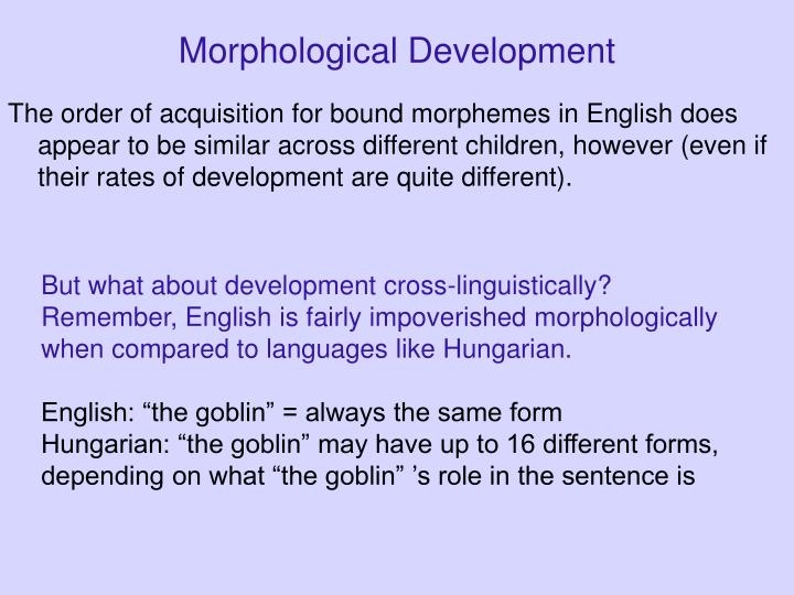 Morphological Development