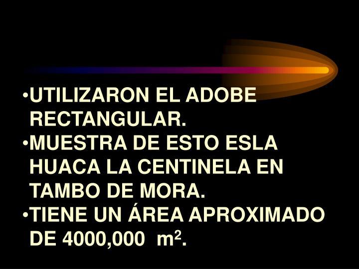 UTILIZARON EL ADOBE RECTANGULAR.