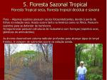 5 floresta sazonal tropical floresta tropical seca floresta tropical dec dua e savana1