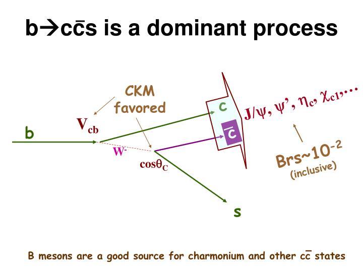 B ccs is a dominant process