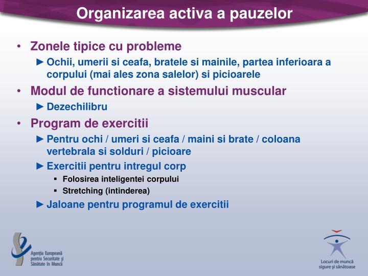 Organizarea activa a pauzelor