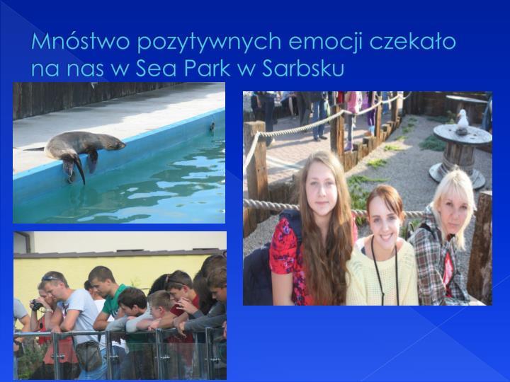 Mnóstwo pozytywnych emocji czekało na nas w Sea Park w Sarbsku