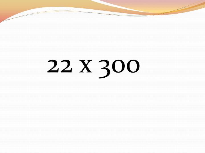 22 x 300