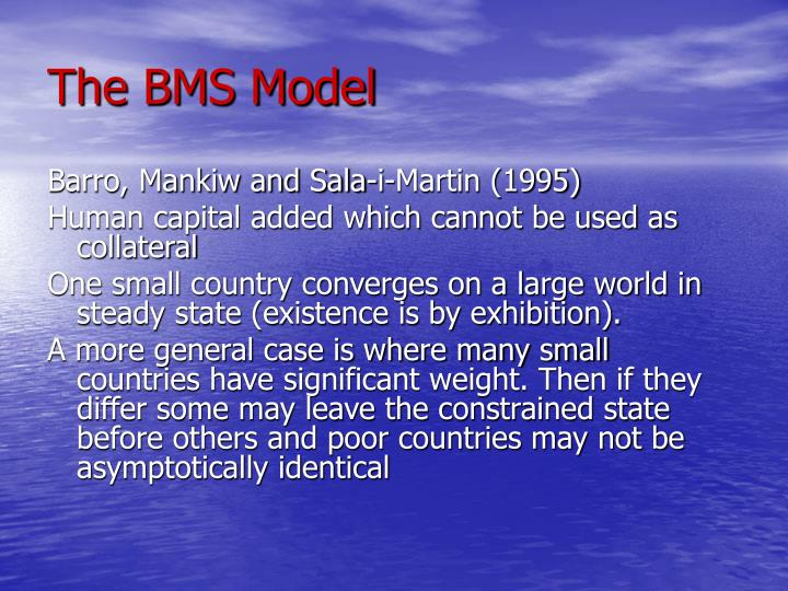 The BMS Model