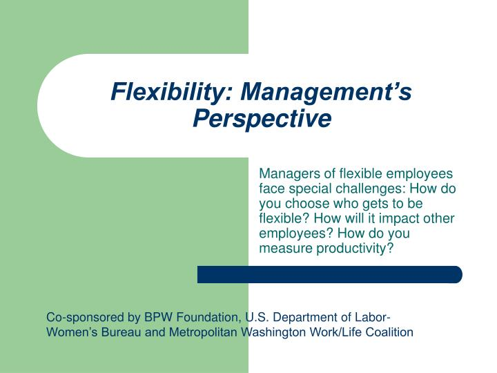 Flexibility management s perspective