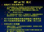 mt or tc