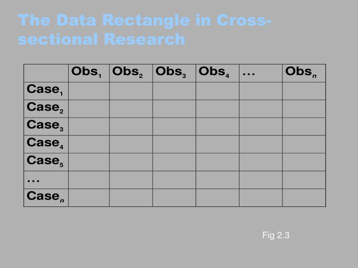 The Data Rectangle in Cross-sectional Research