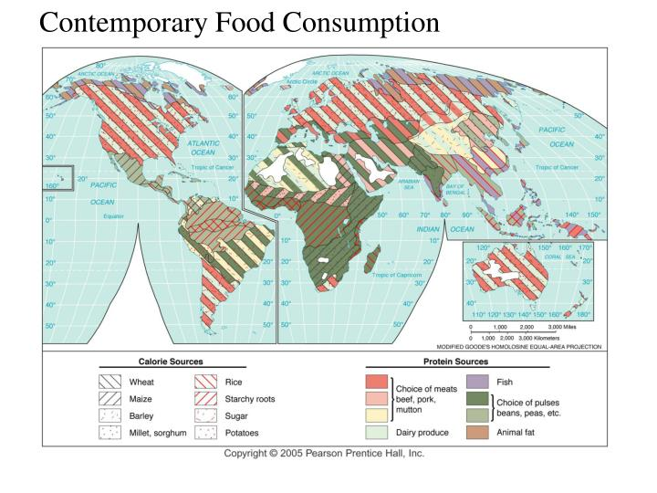 Contemporary Food Consumption