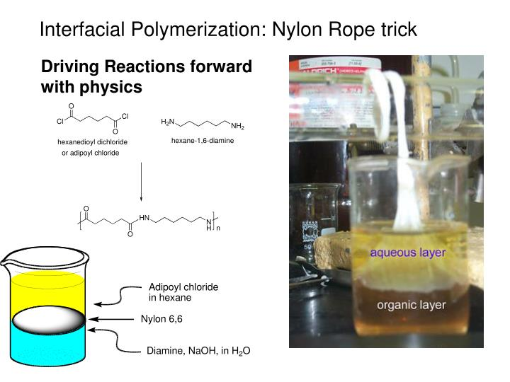 Interfacial Polymerization: Nylon Rope trick