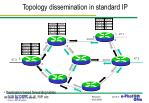topology dissemination in standard ip