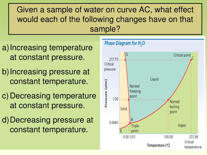 Given a sample of water on curve AC, what effect would each of the following changes have on that sample?
