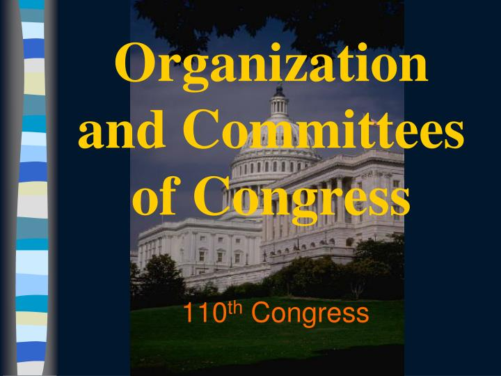 110 th congress