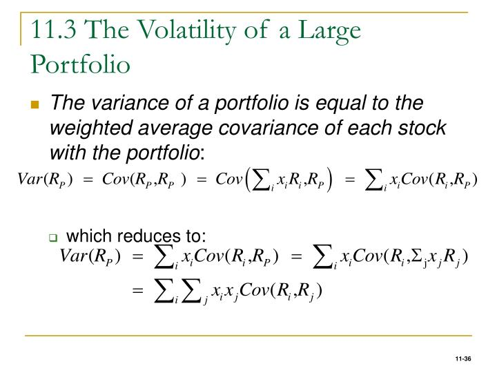 11.3 The Volatility of a Large Portfolio