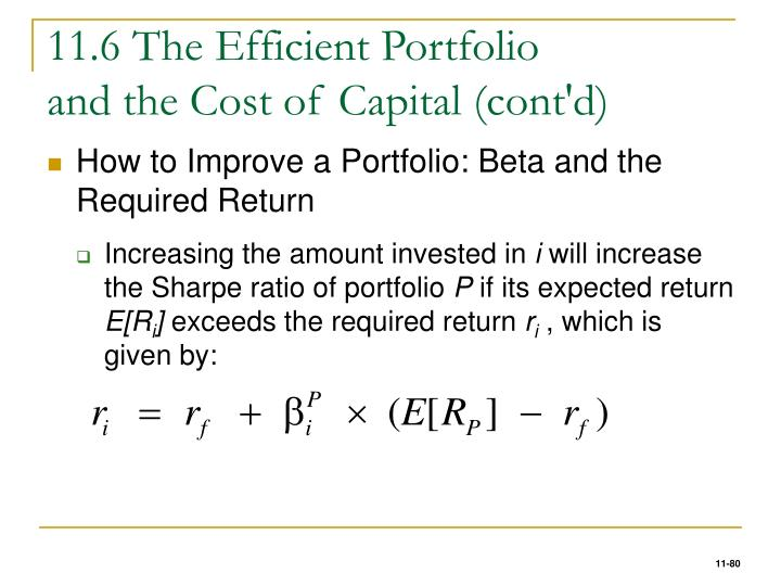 11.6 The Efficient Portfolio