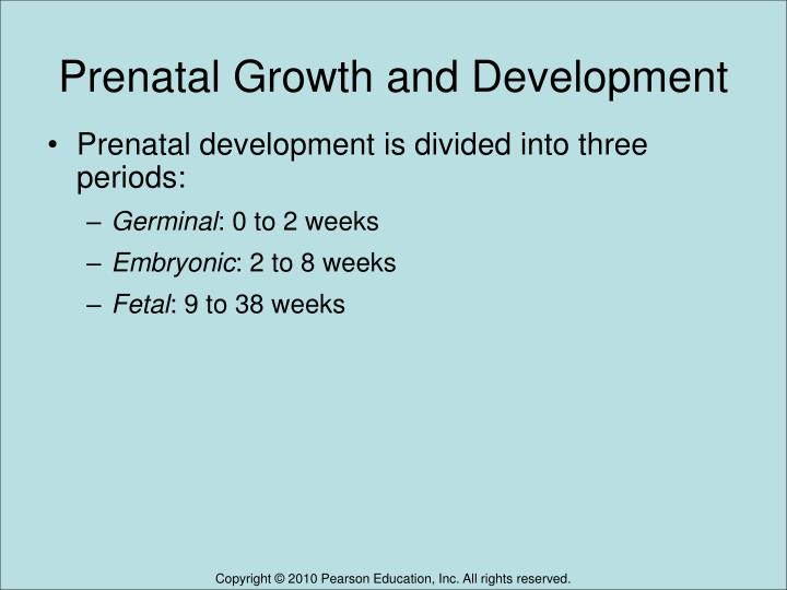 Prenatal growth and development