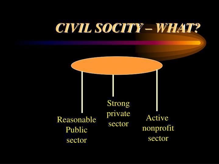 Civil socity what