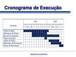 cronograma de execu o