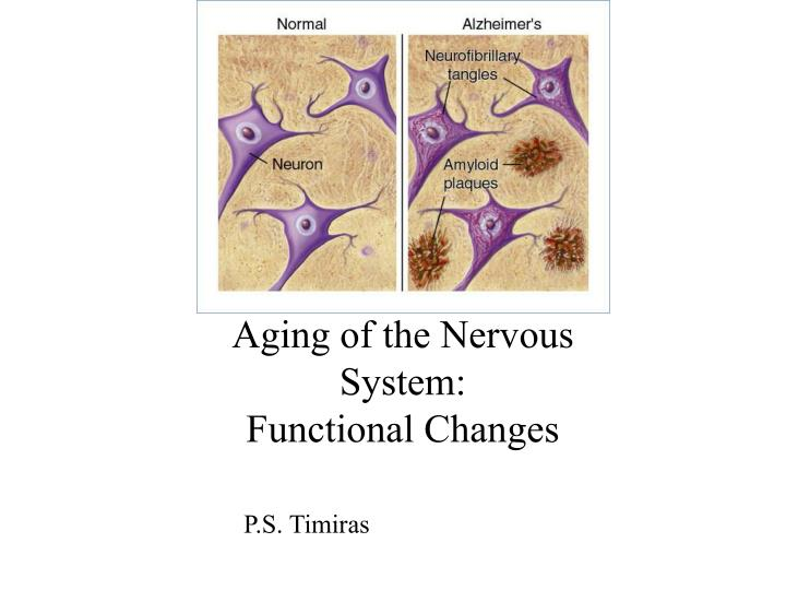 Aging of the Nervous System: